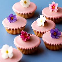 flowerfairycakes_n_lg1